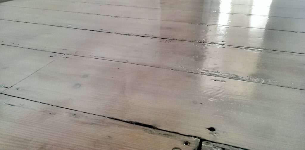 nostalgiecat floors